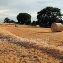 Stubble, straw and round bales