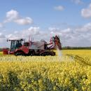 Self propelled sprayer working in flowering oilseed rape crop