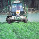 Househam sprayer working in a potato crop