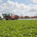 agrifac sprayer in potato crop